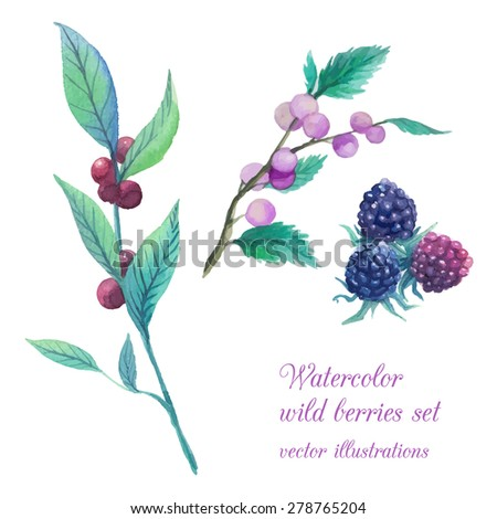 Watercolor wild berries branches set. Hand drawn collection of natural elements: various forest berries, leaves, twigs. Vector illustration - stock vector