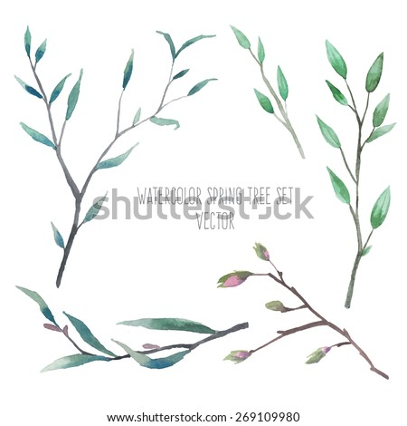 Watercolor wood twigs with buds and leaves. Set of hand drawn vector elements isolated on white background. Natural illustrations - stock vector