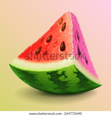 Watermelon piece - stock vector