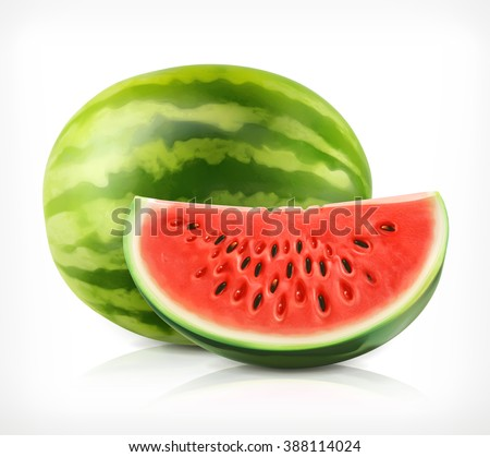 Watermelon, vector icon - stock vector