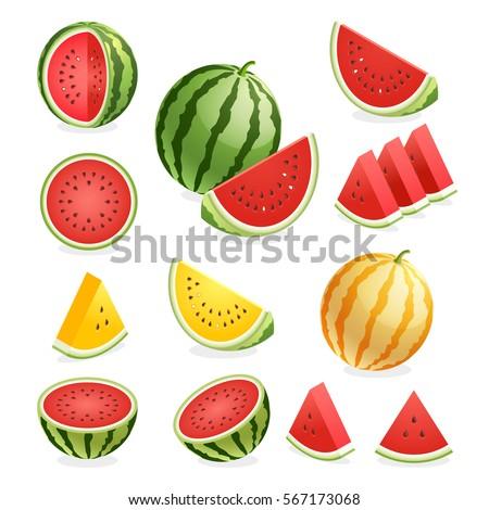 Watermelon. Vector illustration.