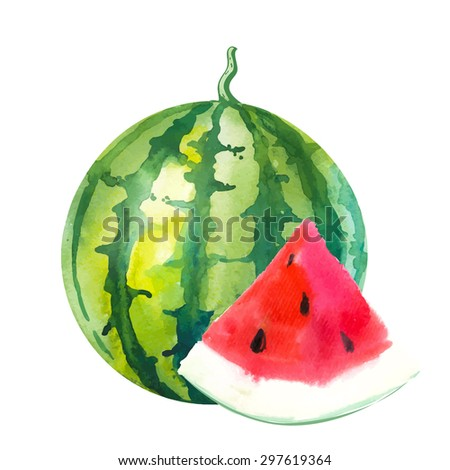 Watermelon. Vector illustration with watercolor fruit. Watercolor illustration of a painting technique. Fresh organic food.  - stock vector