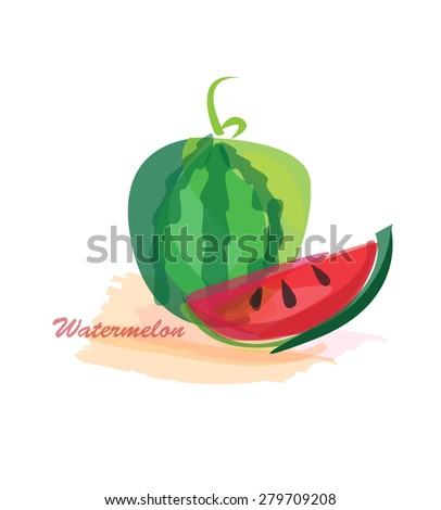 Watermelon water color concept. vector