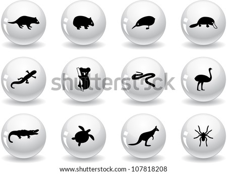 Web buttons, australian animal icons - stock vector