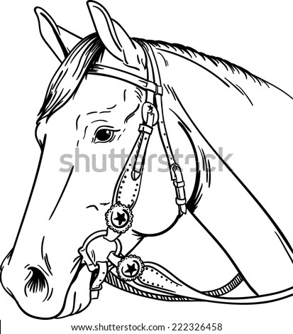 western coloring pages - horse bridle stock images royalty free images vectors