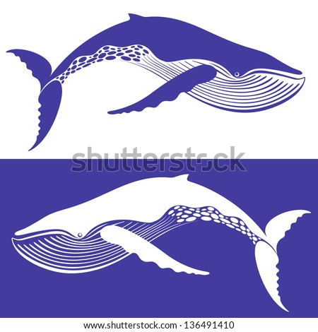 Whale Stock Photos, Images, & Pictures   Shutterstock