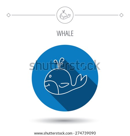 Whale icon. Largest mammal animal sign. Baleen whale with fountain symbol. Blue flat circle button. Linear icon with shadow. Vector - stock vector