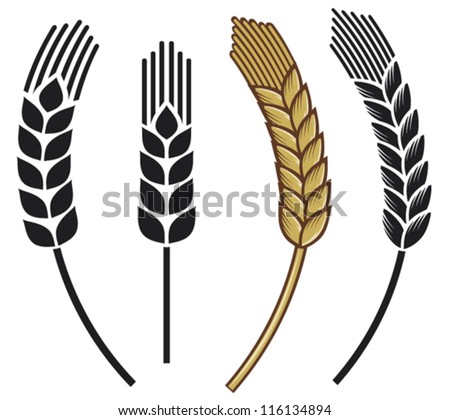 wheat ear icon set - stock vector