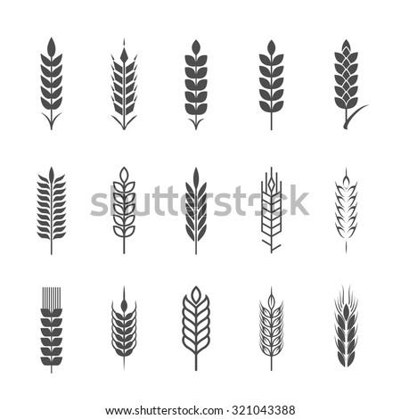 Wheat ear icon set, graphic design elements. - stock vector