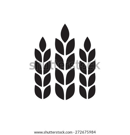 Wheat ears or rice icon. Agricultural symbol isolated on white background. Design elements for bread packaging or beer label. Vector illustration. - stock vector