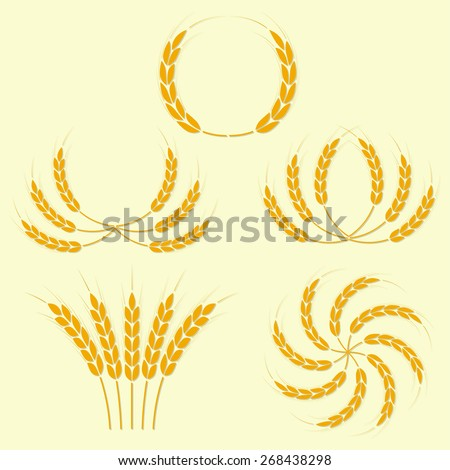Wheat ears or rice icons set. Agricultural symbols. Design elements for bread packaging or beer label. Vector illustration. - stock vector