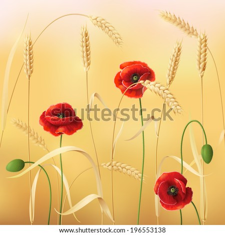 Wheat field with red poppies.  - stock vector
