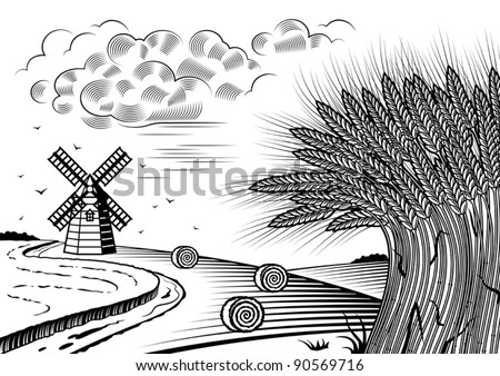 Wheat fields landscape black and white. Vector - stock vector