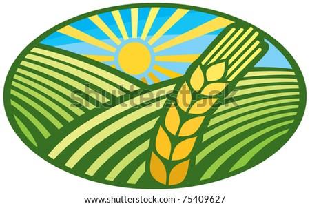 wheat sign - badge (design) - stock vector