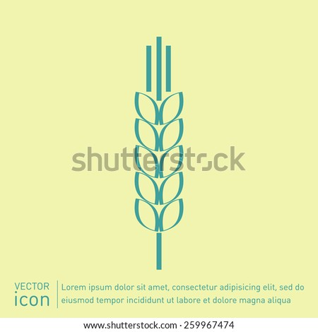 wheat spike ears icon - stock vector