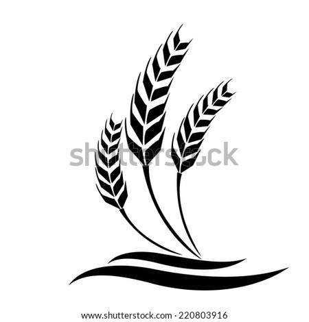 wheat vector stock vector hd royalty free 220803916 shutterstock rh shutterstock com wheat vector free wheat vector psd