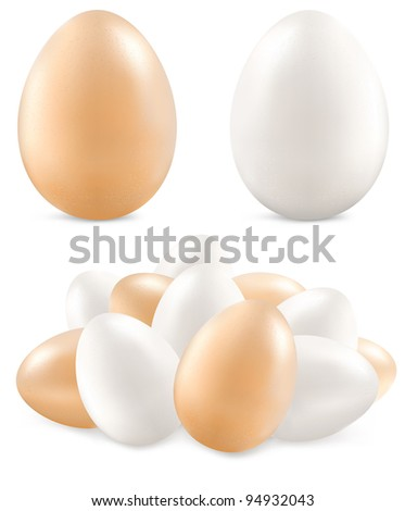 White and yellow eggs isolated on background, vector illustration