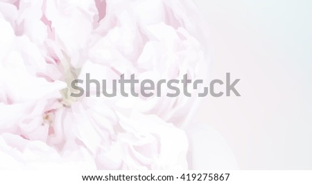 White background with rose in the water. Fresh rose in a bowl of water in pastel soft color horizontal background