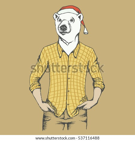 White bear vector illustration. Polar bear in human shirt, and in Christmas Santa hat