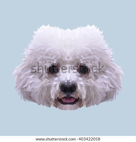 White Bichon Frise dog animal low poly design. Triangle vector illustration. - stock vector