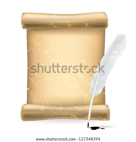 white feather and old scroll - stock vector