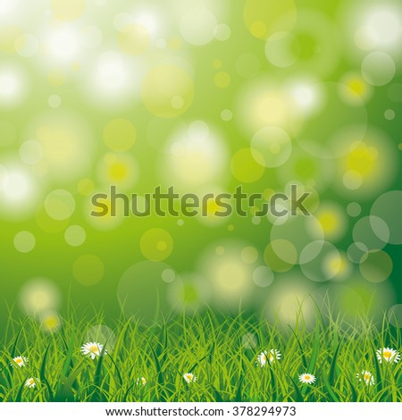 White flowers in grass on the bokeh background. Eps 10 vector file.