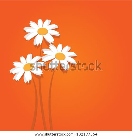 White flowers on an orange background vector