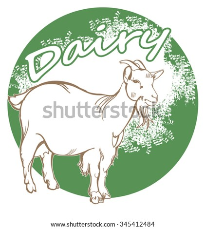 White goat with bell and package of milk 
