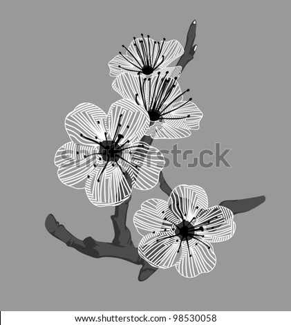 white orchid flowers on a branch on a gray background - stock vector