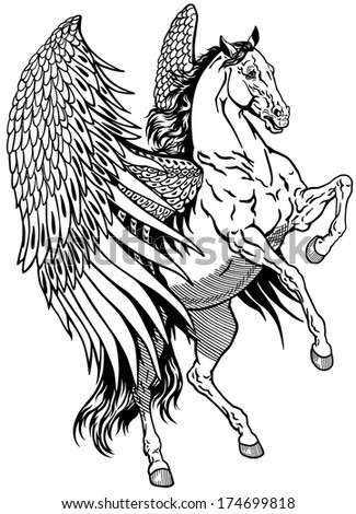 white pegasus, mythological winged horse, black and white tattoo illustration - stock vector