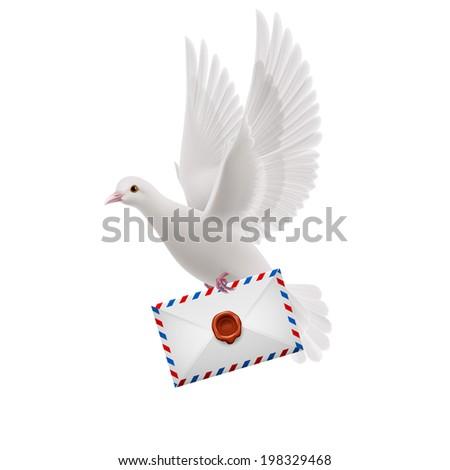 White pigeon flying with letter in beak - stock vector
