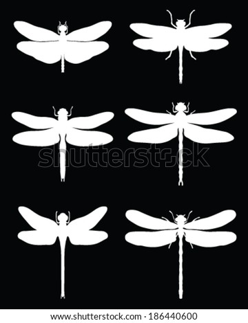 White silhouettes of dragonflies, vector - stock vector