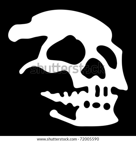 White skull on black background
