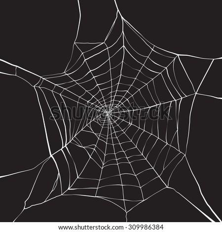 White spider web on dark background - stock vector