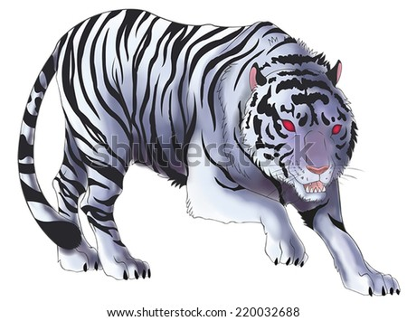 White tiger illustration in isolated background, create by vector - stock vector
