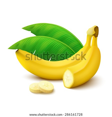 Whole banana, half banana, slices and leaves isolated on white background. Vector illustration.