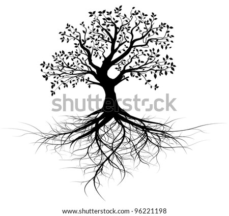 whole black tree with roots isolated white background vector - stock vector