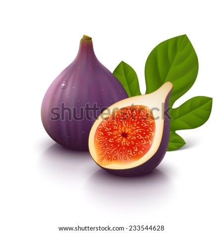Whole figs with slice and leaf isolated on white background. Vector illustration. - stock vector