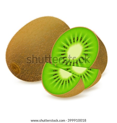 Whole kiwi fruit and his sliced segments isolated on white background. Realistic vector illustration.