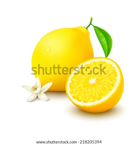 Whole lemon with leaf, slice and flower isolated on white background. Vector illustration. - stock vector