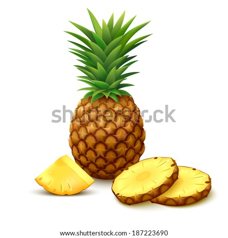 Whole pineapple with round slices isolated on white background. Vector illustration.  - stock vector