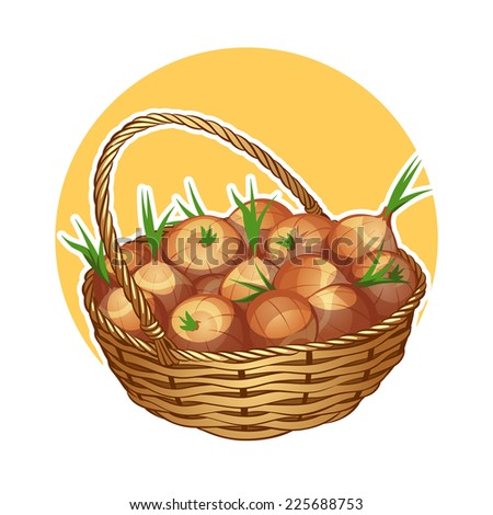 Wicker basket with onion. Vector clip-art illustration on a white background.
