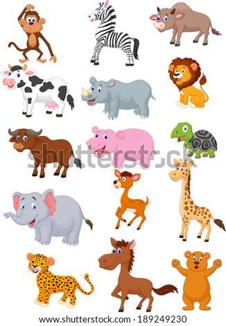Wild animal cartoon collection  - stock vector