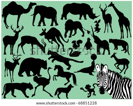 Wild animals - stock vector