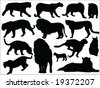 Wild cats vector silhouettes - stock vector