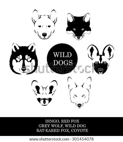 Wild Dog Faces Vector Illustration - stock vector