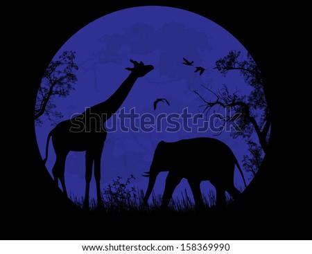 Wild elephant and giraffe  over blue sunset, vector illustration - stock vector