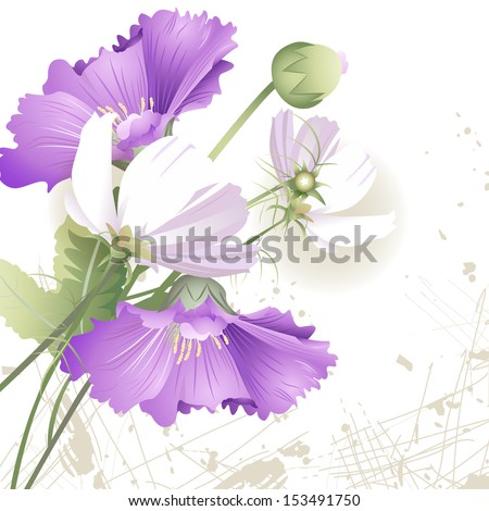 Wild flowers in color on a white background - stock vector
