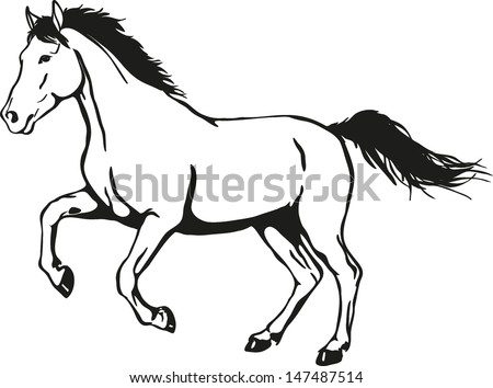 horse drawing stock images royaltyfree images amp vectors