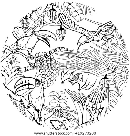 Wild Life in the Jungle. Coloring Page.